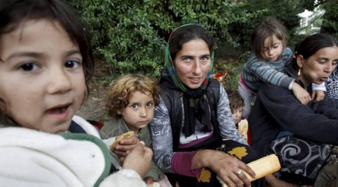 Romfolk til besvær- bør de jages eller skytes?