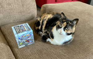Calico cat curled up with Dungeon Drop box
