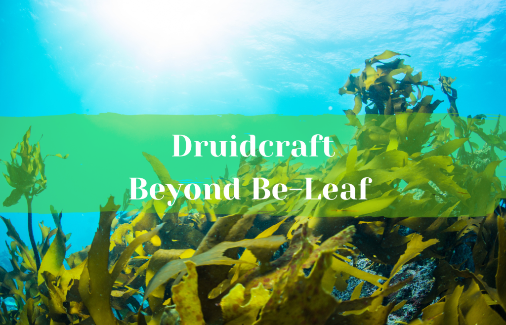 Text reads Druidcraft: Beyond Be-Leaf over a kelp forest in the ocean
