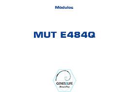 Modulo MUT E484Q