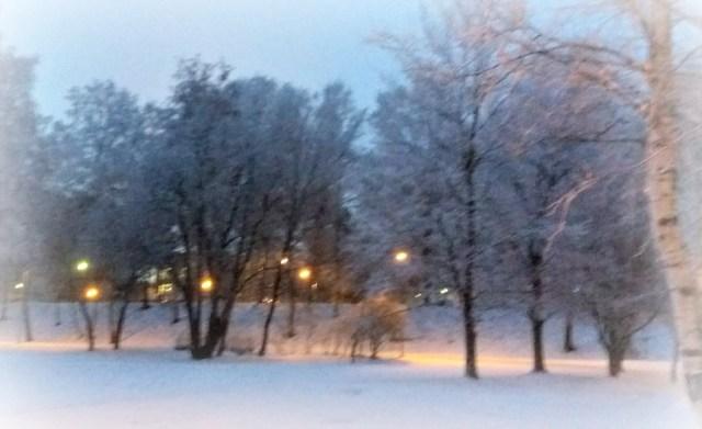 Eteläpuiston tarjoaa virkistystä ympäri vuoden. Kuva Cai Melakoski.