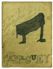 03_camaguey