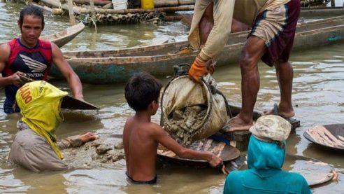 教皇、6月12日「児童労働反対世界デー」に向けアピール