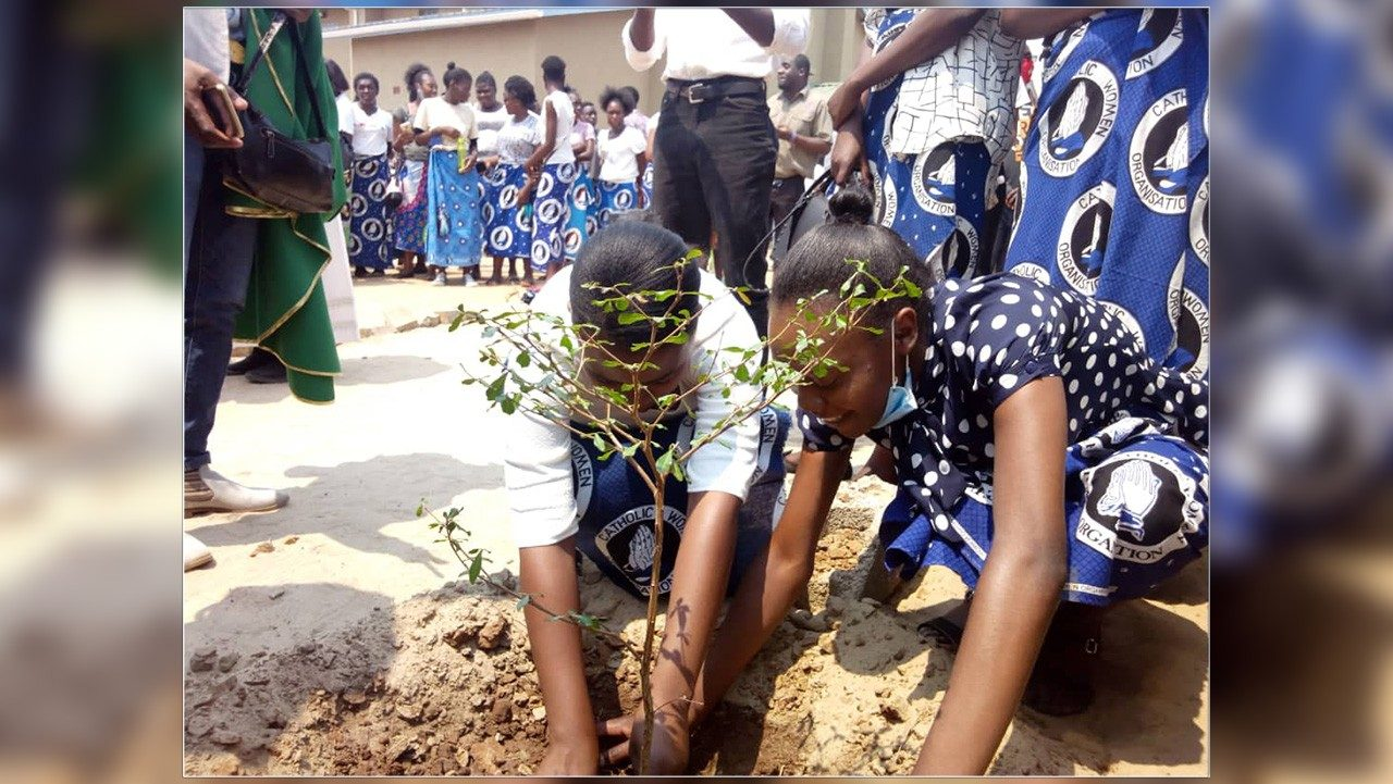 Zambia: Young people in Livingstone Diocese celebrate season of creation - Vatican News