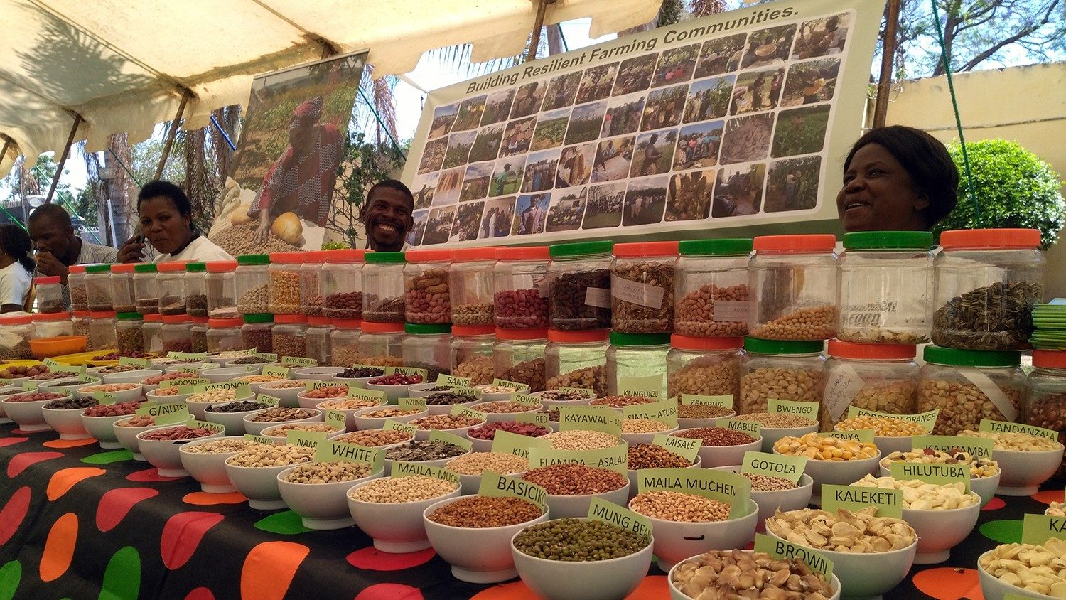 Caritas Zambia urges the Zambian Government to patent local foods - Vatican News