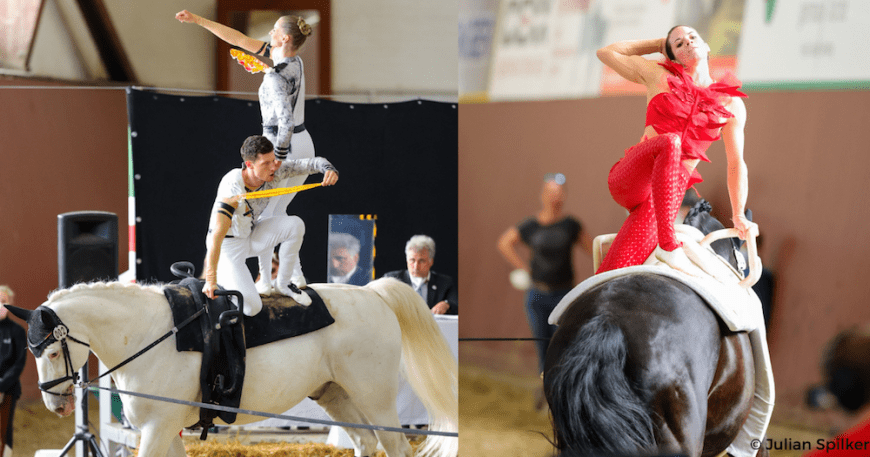 qualifying competition for the FEI World Championships for Seniors