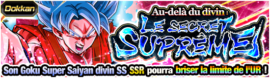 Dragon Ball Z Dokkan Battle Secret Suprême