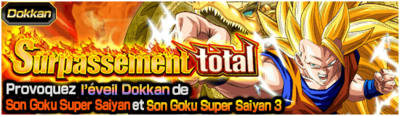 Dragon Ball Z Dokkan Battle Surpassement Total