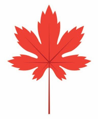 Create A Maple Leaf In Adobe Illustrator