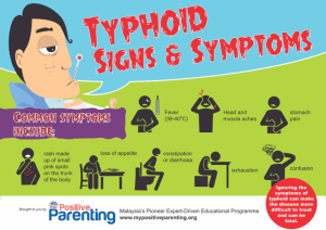 typhoid fever infographic