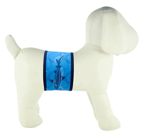 PlayaPup Male Dog Belly Band