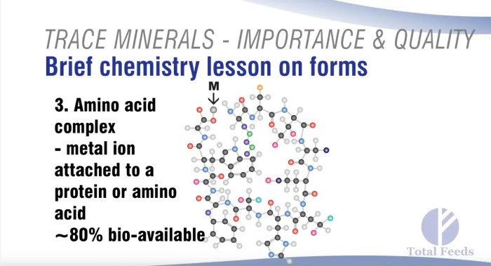 A Mineral Attached to an Amino Acid Complex. Courtesy of Dr. Harry Anderson, Total Feeds, Inc.