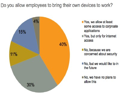 BYOD Adoption Survey_July 2013