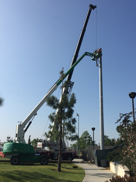 Ball Park Light Pole Installation - Rancho Cucamonga 2