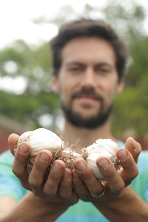 Owner Max Becher with freshly harvested organic garlic.