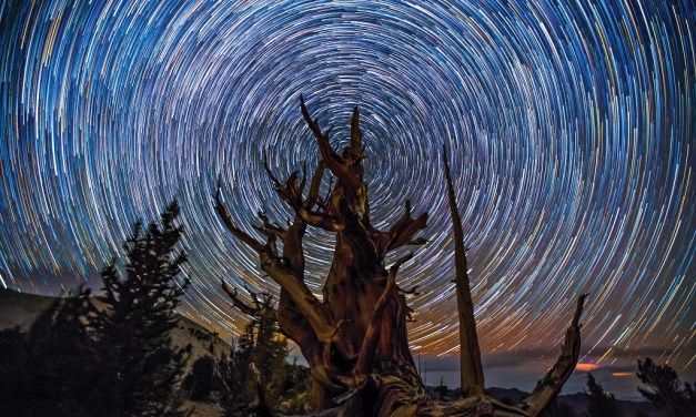 TURN OFF THE LIGHTS | SKYGLOW project showcases natural sky in Ojai event