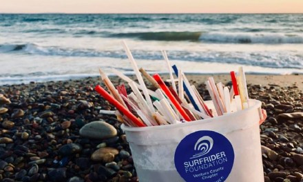 THE LAST STRAW | Restaurants, events ditch single-use straws in environmental push