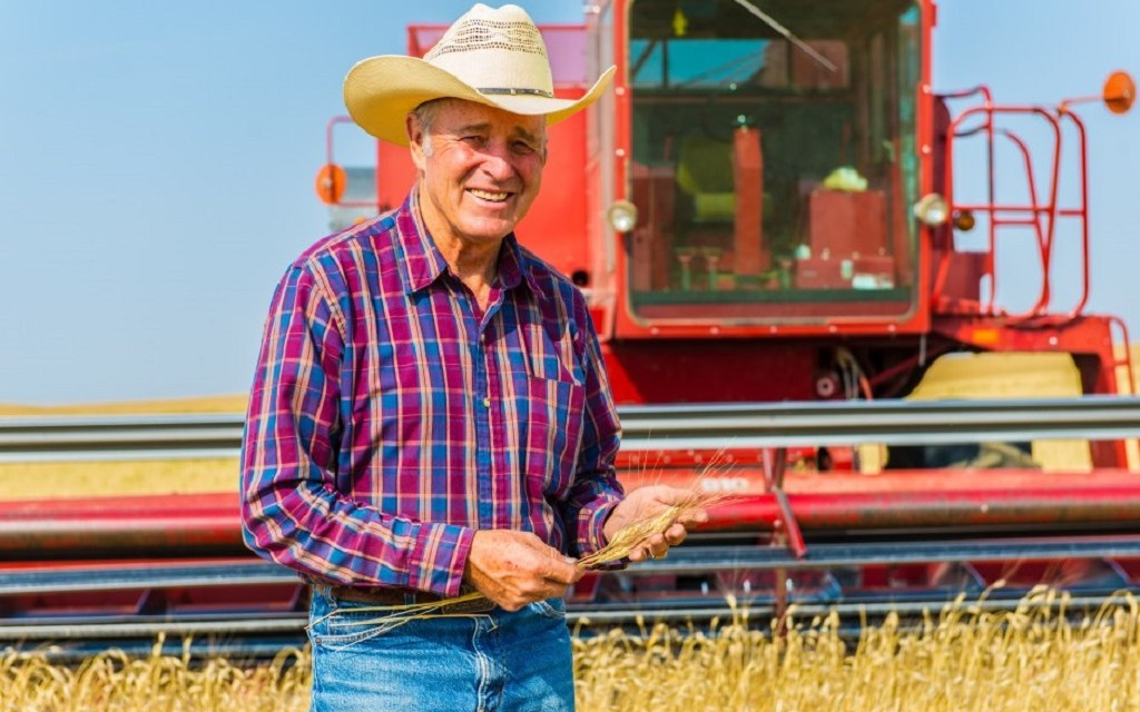 HIGH COST OF CHEAP FOOD   Sustainable ag expert shares insight on consequences of industrial farming