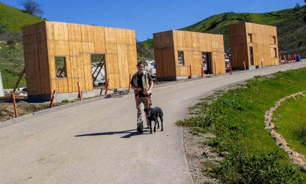 FROM THE PAWS UP | Search Dog Foundation accepting item donations for newly rebuilt Search City