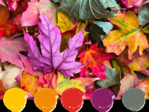 schema di colore nei toni del giallo, del rosso e del verde ispirato alle foglie autunnali
