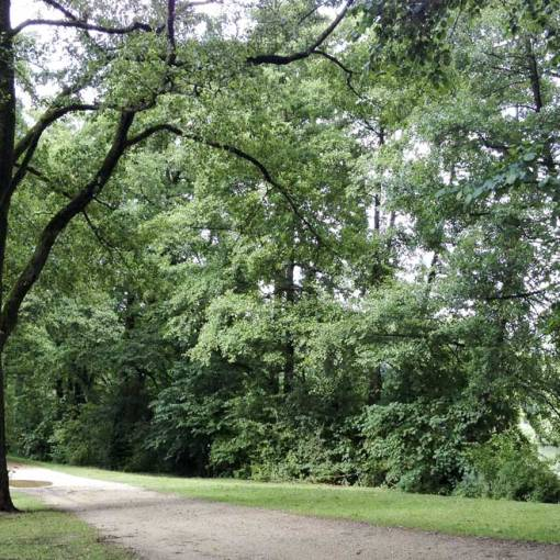 beautiful landscaped grounds with lakes and trails for walking/running or biking in