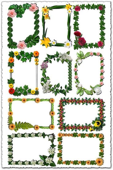 Frames Spring Borders And Flower