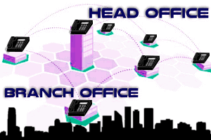 Branch-Office-Phone-Interconnection-Dubai-UAE