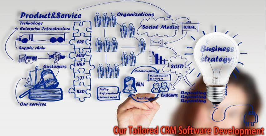 Custome CRM for Business
