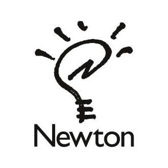 Newton (N)