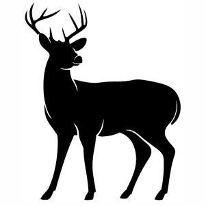 Download Deer Buck Standing Svg | black Deer svg cut file Download ...