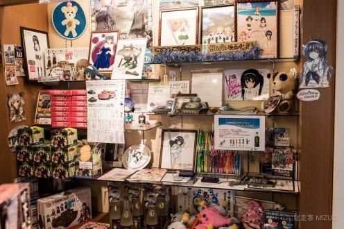 201711_Ibaraki_Tochigi_Gunma_Japan_Travel_By_RentalCar-26