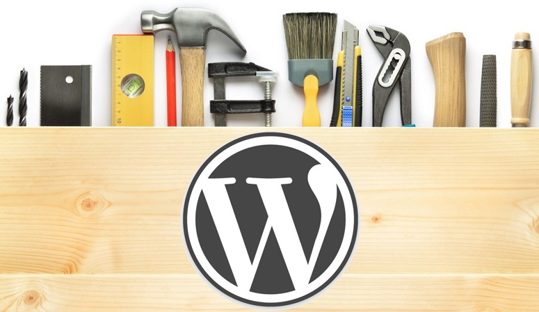 Wordpress for Small & Mid Business Website
