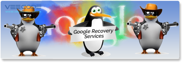 Veecode Google Recovery Services