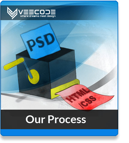 Veecode our-process