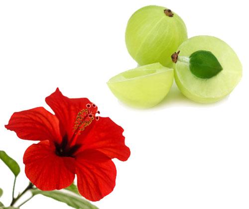 Amla-and-Hibiscus-Flower – Veena Organic Products