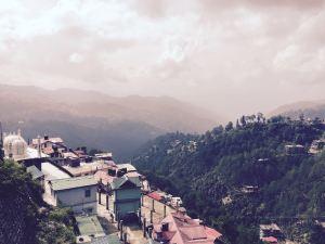 Shimla Valley View