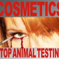 Bellezza senza crudeltà: cosmetici cruelty-free