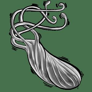 Hellicobacter Pylori, Ilustración de caffeinesystem - Pixabay