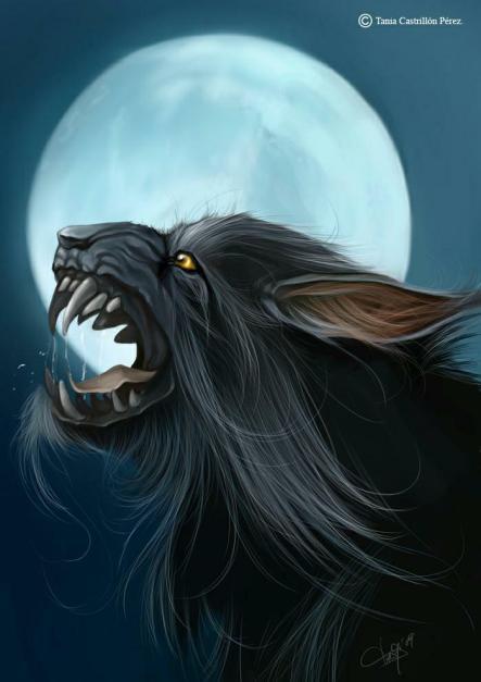 Home Llobu, Ilustración de Thanya Castrillon