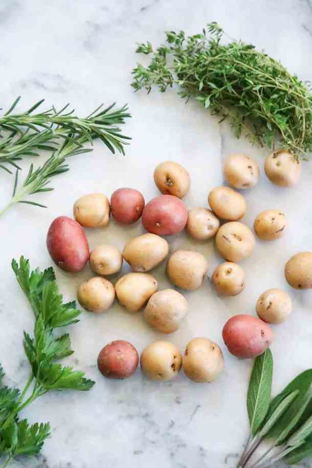 Overhead shot of red and white baby potatoes with fresh herb sprigs surrounding.