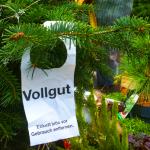 Weihnachtsbaum mieten