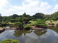 Giardino nazionale Shinjiuku Gyoen