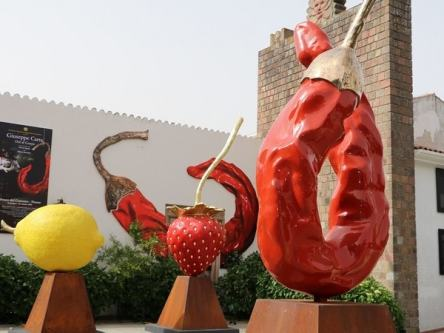 INGRESSO MUSEO LS_LIMONE_FRAGOLA_PEEPERONCINO