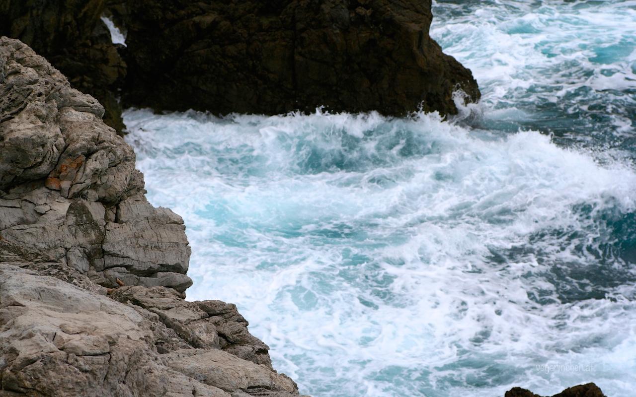 mein geliebtes wildes Meer