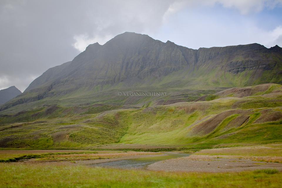 Unterwegs im Norden Island veganinchen