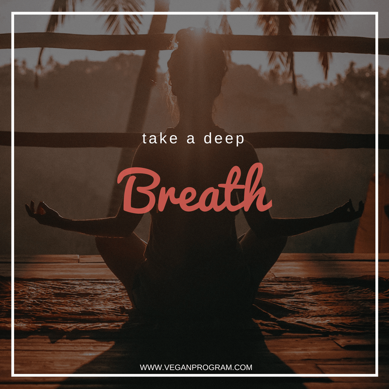 Take A Deep Breath Quote Archives Vegan Program