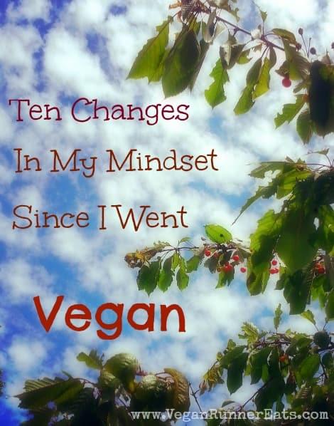 Ten vegan mindset changes I've had after being vegan for a year