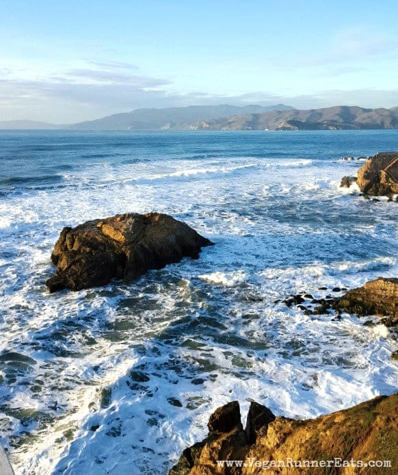 Pacific-Ocean-San-Francisco-from-Lands-End-park-1