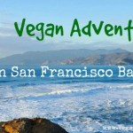Our Vegan Adventures in San Francisco Bay Area: Millennium Restaurant, Davey Jones Deli, Smart Alec's, Blossom Vegan Restaurant.