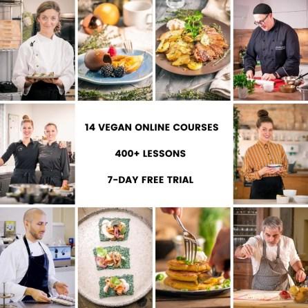 The best online vegan cooking course to buy is Veecoco